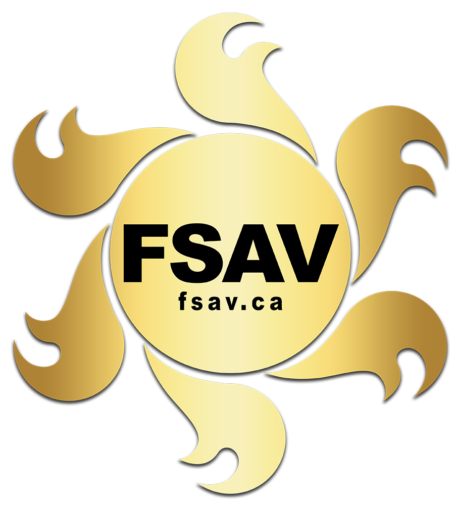FS AUDIO VISUAL